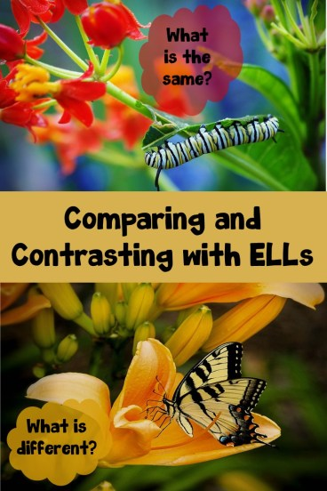 Comparing and Contrasting with ELLs