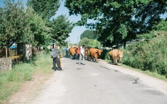 A Personal Experience on Camino de Santiago - A World to Travel (7)