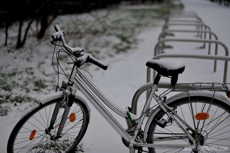 A bike in the snow