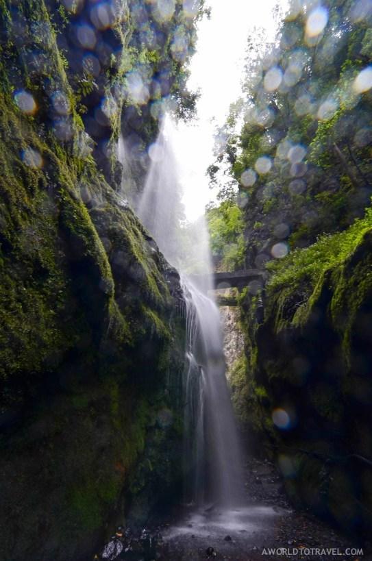 La Palma - Canary Islands- A World to Travel-11