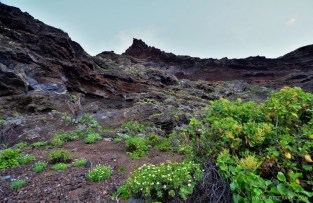 La Palma - Canary Islands- A World to Travel-33