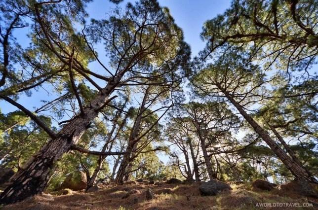 Caldera de Taburiente hiking trail, La Palma