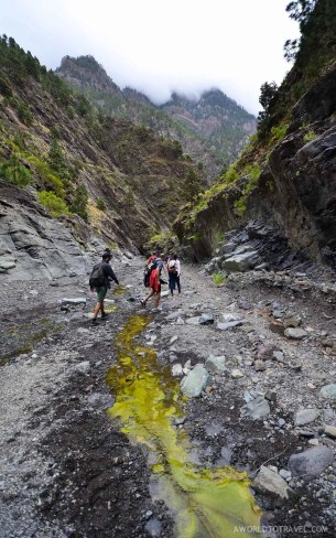 La Palma - Canary Islands- A World to Travel-59