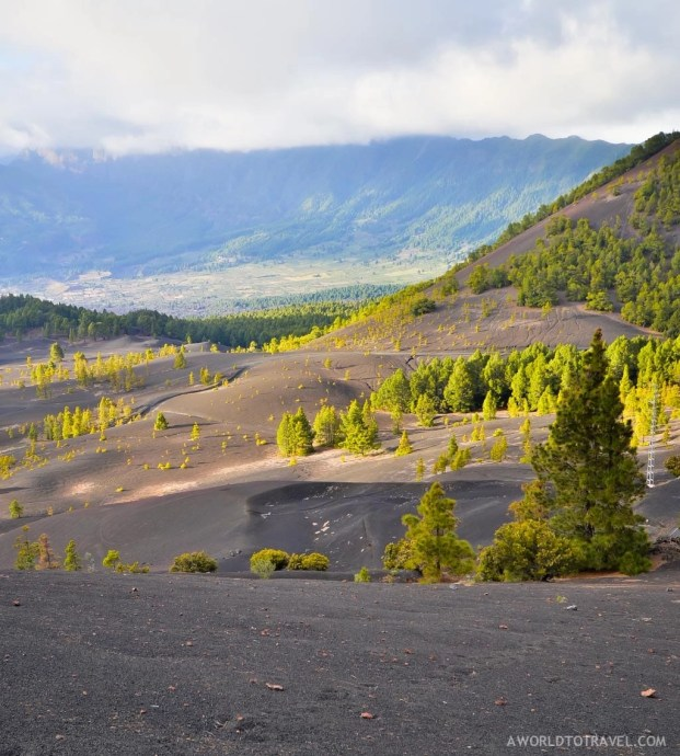 La Palma - Canary Islands- A World to Travel-64