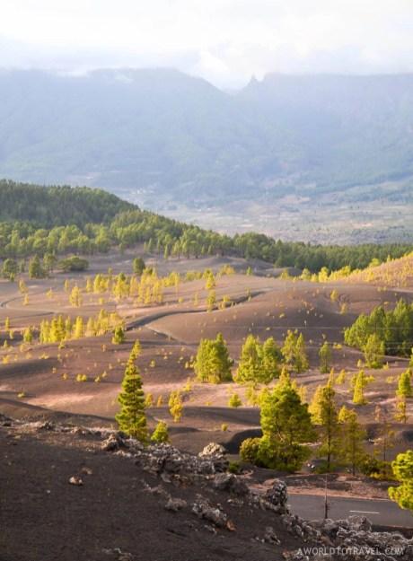 La Palma - Canary Islands- A World to Travel-70