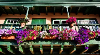 Blooming balconies of Santa Cruz, La Palma.