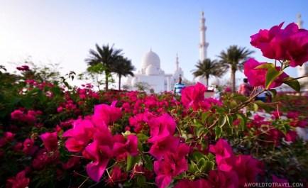 Experiencing Dubai - A World to Travel-69