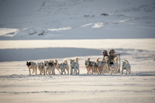Greenland Dog Sledding 3 - Discover the World of Greenland Top 6 Arctic Attractions - A World to Travel