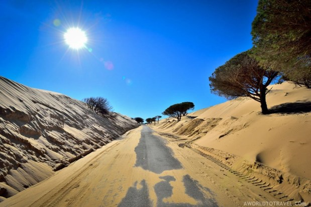 Andalucia Road Trip Itinerary and Tips - A World to Travel-42