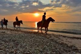 Exploring Gili Trawangan - Indonesia - A World to Travel-39
