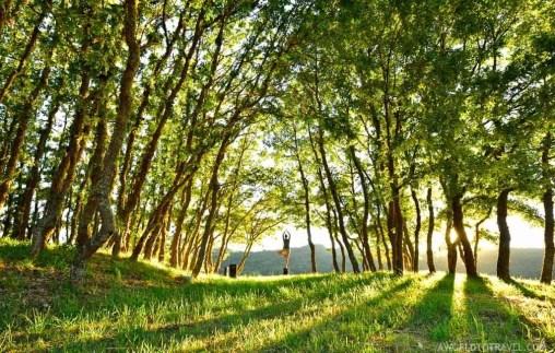 Experience Galicia - A Veiga Trevinca Starlight - A World to Travel-36