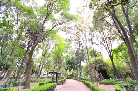 Things to do in Mexico City - A World to Travel-59