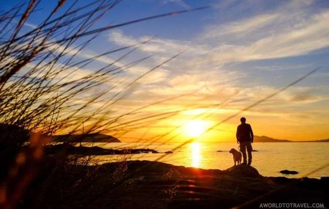Dog and owner sharing a peaceful sunset moment - Galicia - A World to Travel