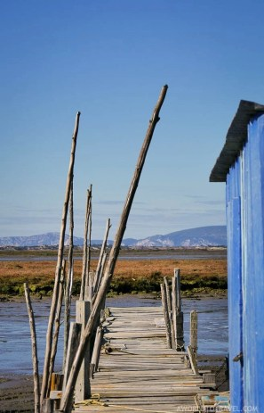 Cais Palafitico da Carrasqueira Comporta - Rota do Peixe Alentejo Portugal - A World to Travel (11)