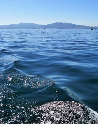 6. Sailing - Galician Getaway - Vigo Experiences Worth Living - A World to Travel (6)