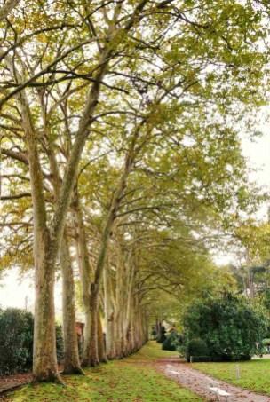 10. Atlantico Botanical Garden - Fun Things To Do In Gijon Rain or Shine - A World to Travel (5)