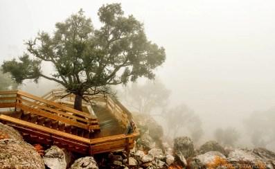 Passadiços do Paiva - Arouca - Montanhas Magicas Road Trip - Portugal - A World to Travel (15)