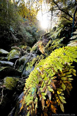 Queda de Agua do Ribeiro de Sampaio - Cinfaes - Montanhas Magicas Road Trip - Portugal - A World to Travel (3)
