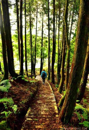 Lagoa Empadadas - Best Photography Locations in Sao Miguel - Azores Road Trip - A World to Travel (24)