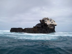 How To Plan Your Galapagos Trip As A Solo Traveler Without Breaking The Bank - A World to Travel