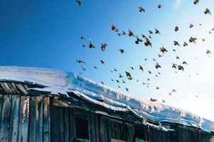 Cherepovets - Things That will make you Visit Siberia in Winter - A World to Travel