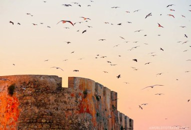 El Jadida - One Week Morocco Itinerary Along The Atlantic Coast - A World to Travel (10)