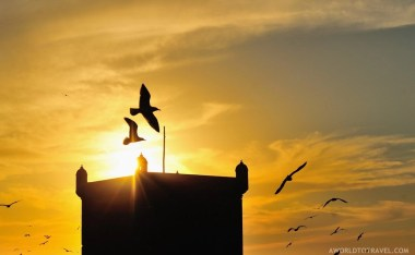 Essaouira - One Week Morocco Itinerary Along The Atlantic Coast - A World to Travel (7)