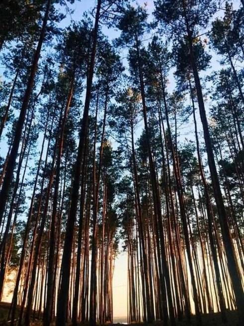 Wilderness fitness - Wellness Breaks - Healing Retreats - Spa Getaways - A World to Travel (3)