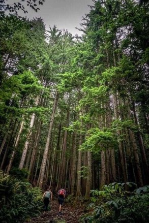 Grouse Mountain (2) - Best Day Hikes Around Vancouver - A World to Travel