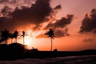 Sunset palm trees - Most Romantic Beaches In The Bahamas - A World to Travel