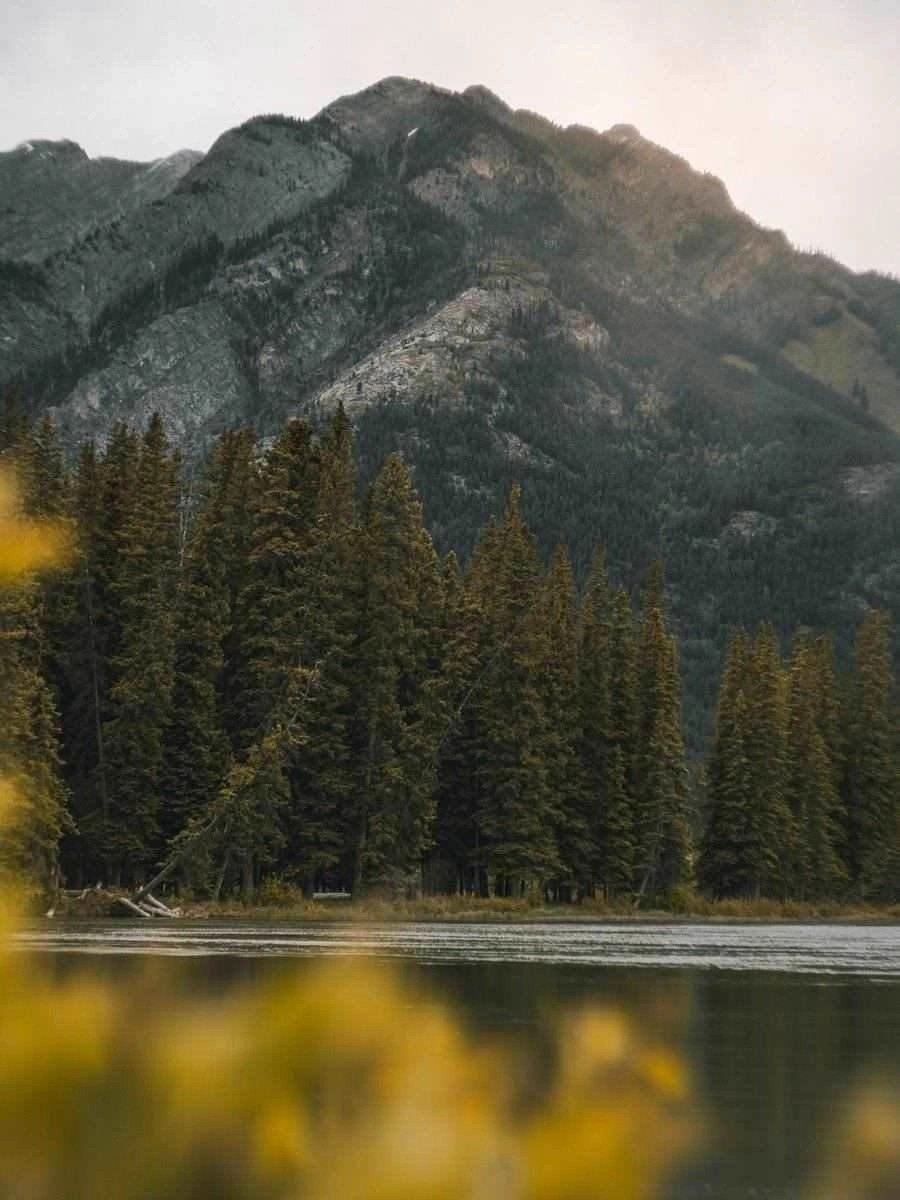 48 Hours Guide To The Best Things To Do In Banff Canada For Non-Hikers - A World to Travel (6)