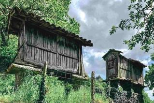 Etapa 6 - Melide Santiago de Compostela - El camino en bici con Tee Travel - A World to Travel (10)
