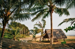 What Makes Kerala Special - Human by Nature - A World to Travel-109