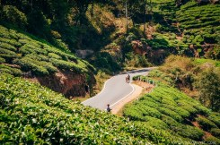 What Makes Kerala Special - Human by Nature - A World to Travel-65