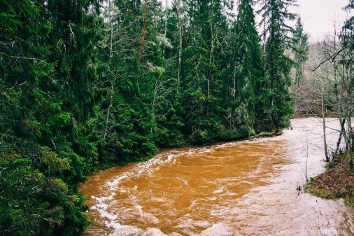 Amata Hiking Trail - Gauja National Park - Autumn in Latvia - A World to Travel (5)