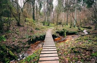 Cecīļi Nature Trail - Gauja National Park - Latvia in Fall - A World to Travel (3)