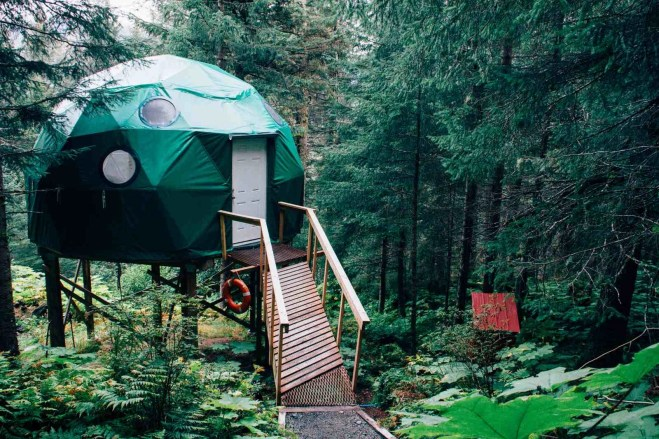 Glamping dome in a forest - Backyard camping guide