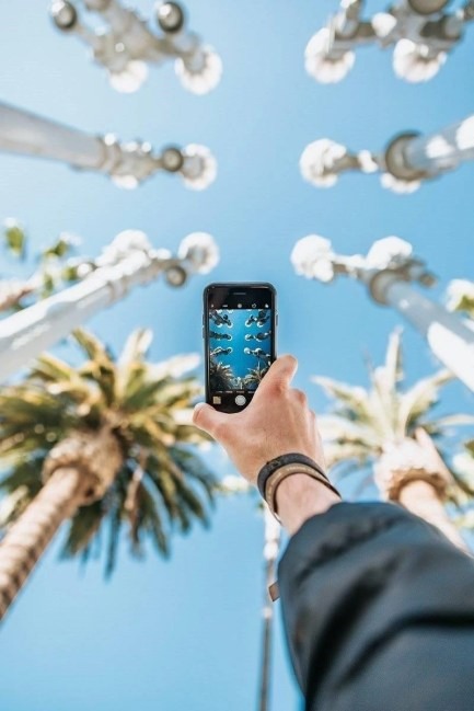 person taking a picture to palm trees - how to take a workcation