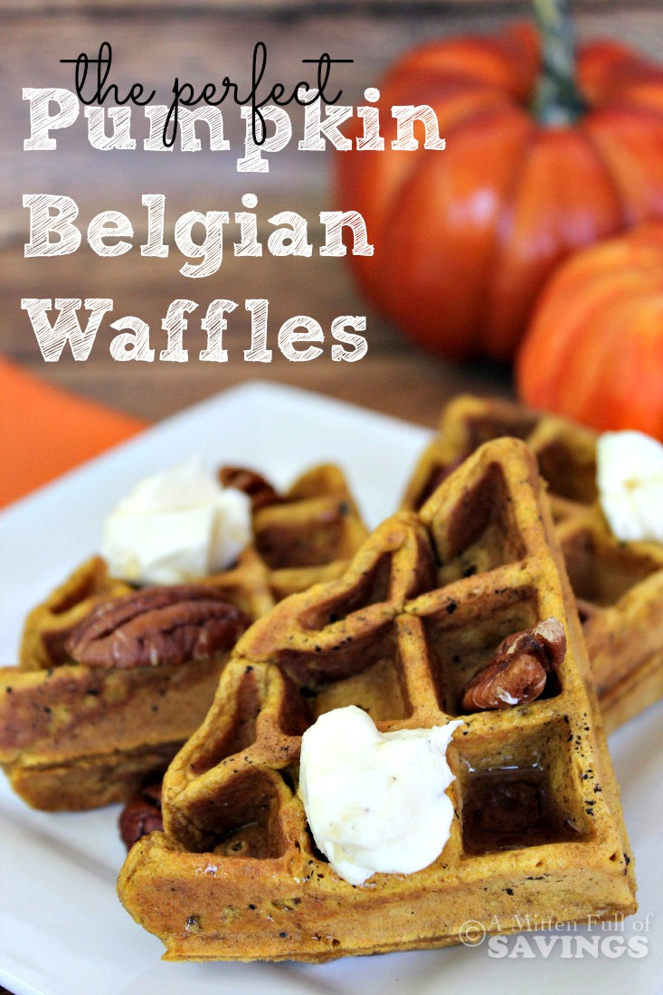 Easy waffle recipe the perfect pumpkin belgian waffles the perfect pumpkin belgian waffles forumfinder Choice Image