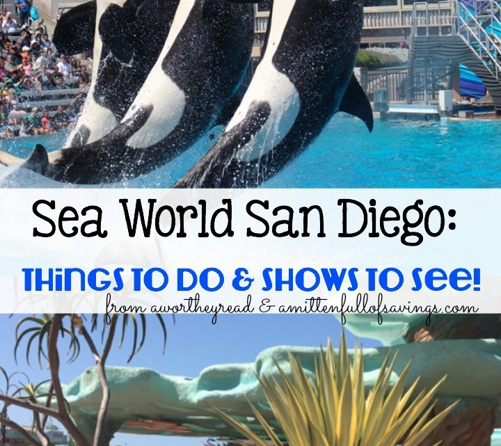 Planning a trip to San Diego Sea World? Read about the things that you should do, shows to see, including our favorite shows. I also included savings tips and how to make the most of your day at Sea World San Diego!