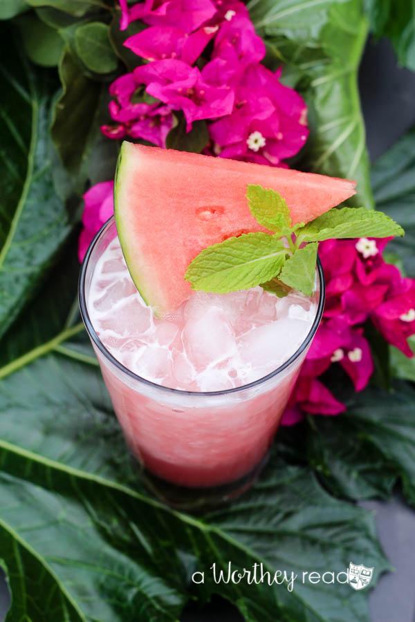 Guava Watermelon Margarita-1
