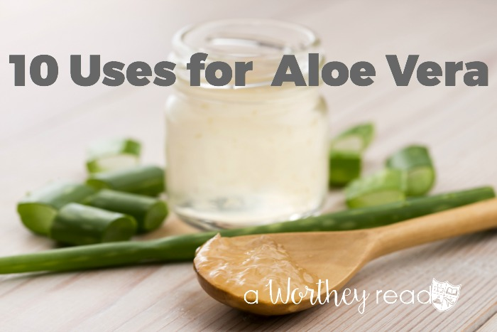 There are many ways you can use Aloe Vera. Natural medicines and natural ways to cure yourself is best for you and your family. Here's 10 Uses for Aloe Vera