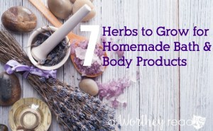 7 Herbs to Grow for Homemade Bath and Body Products