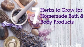 Do you like to create and make your own homemade products? Here's the herbs you should be growing or using to make homemade bath and body products. Great DIY gift ideas for Moms or a birthday too! Herbs to Grow for Homemade Bath and Body Products