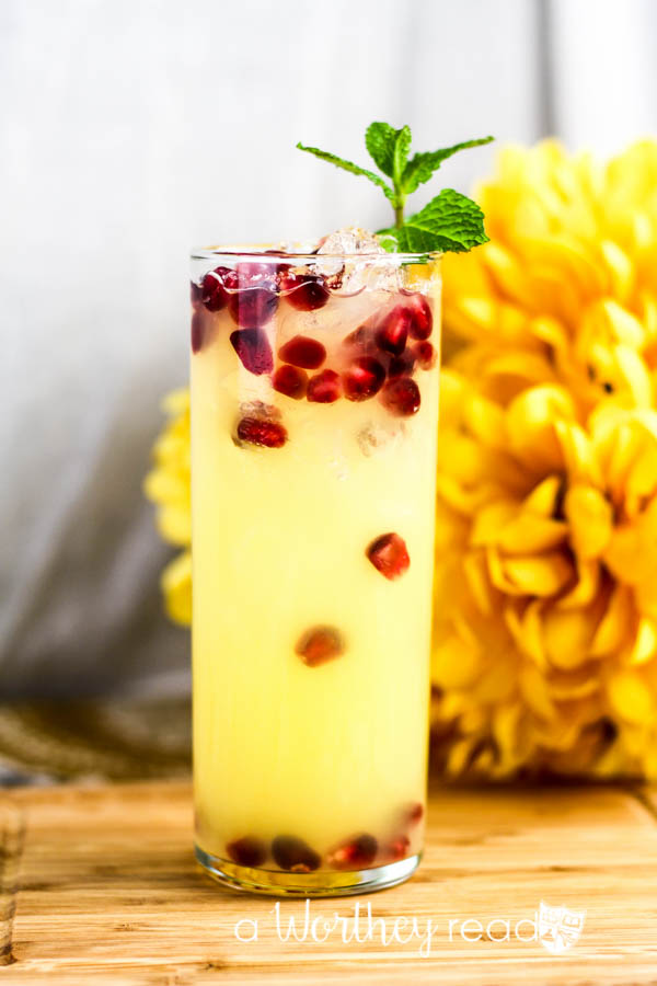 Summer Cocktail- Pomegranate Lemonade