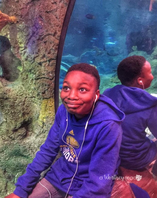 Things to do in Grapevine TX for families