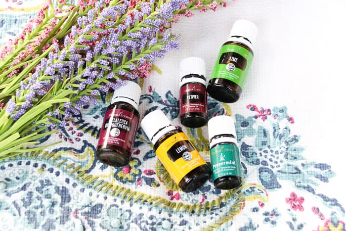 These top back to school diffuser blends will help students and teachers at home or in the classroom. Get the back to school essential oil recipes below.