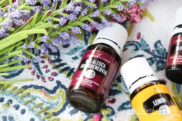 Best Essential Oil Recipes for School