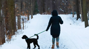 Ways to cope with the winter blues