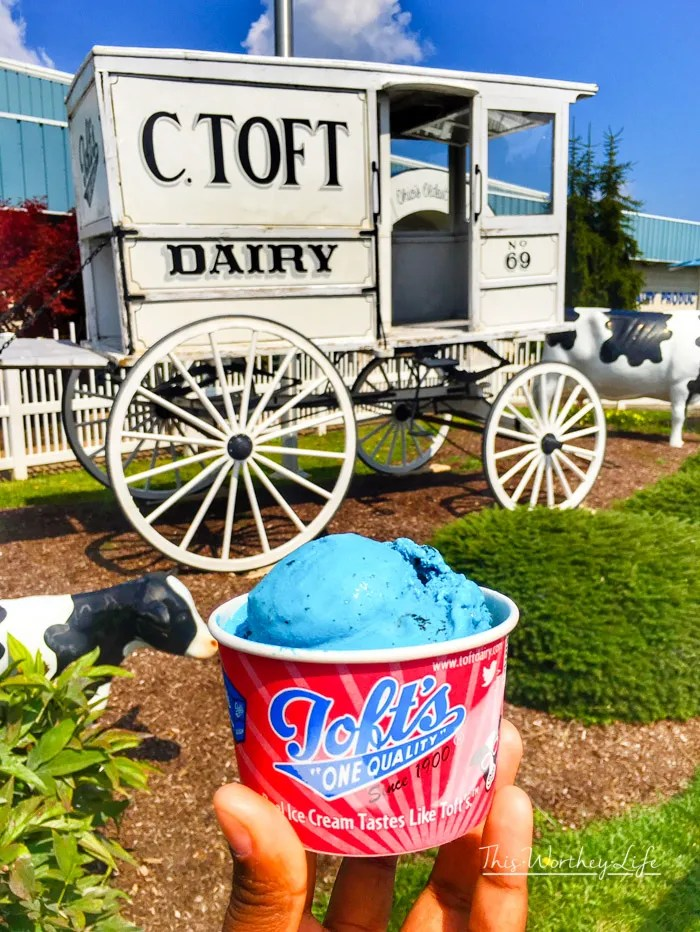 Best Ice Cream in Sandusky- Toft Ice Cream